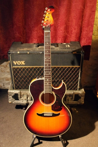 Fender El Rio 6-String Acoustic (Sunburst)