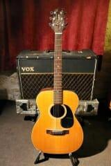 Takamine 6-String Acoustic F-307