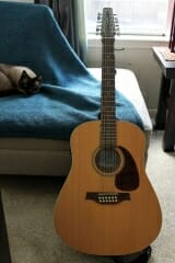 Seagull 12 String Acoustic