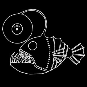 IN DEEP MUSIC ARCHIVE LOGO